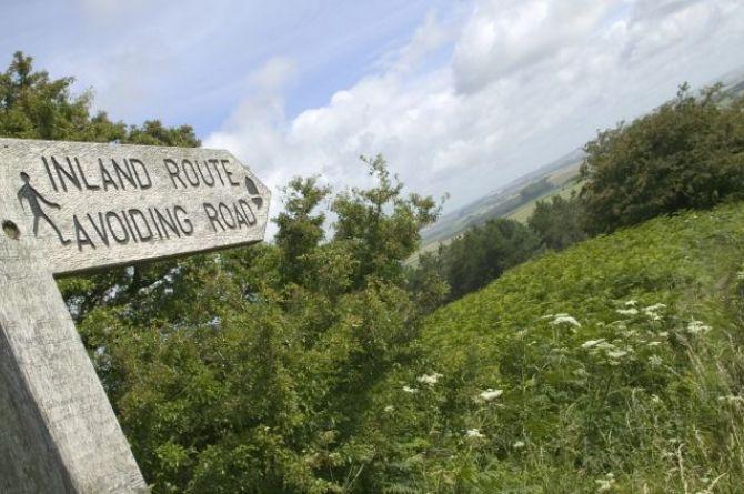 Час вместо секунды: в Англии из-за ремонта дорог водителям предложили объезд длиной в 66 километров