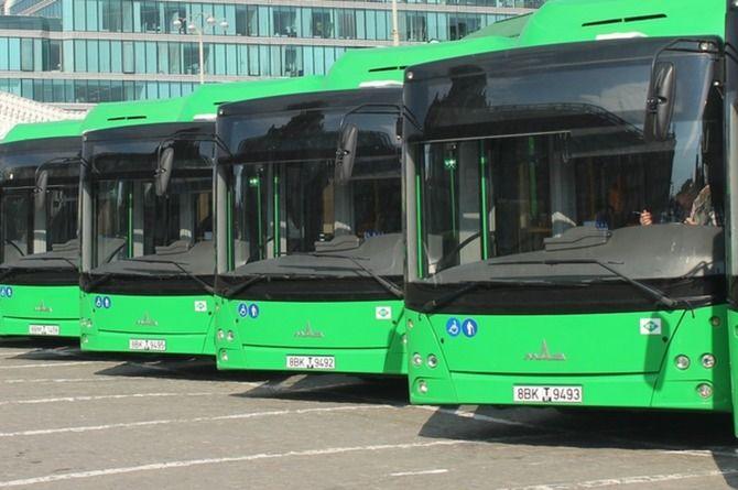 Минтранс не даст уснуть за рулём водителям автобусов и маршруток