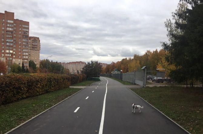 На территории Новой Москвы построят около 26 километров велодорожек