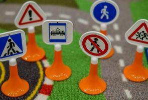 Брянская область станет первым регионом, в котором запустят проект по повышению безопасности пешеходов