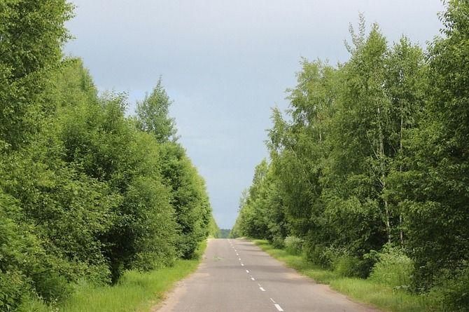 Дорогу, соединяющую две федеральные трассы, отремонтируют в Тверской области